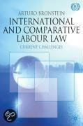 9780230228221-International-and-Comparative-Labour-Law