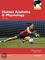 9780321799173-Human-Anatomy--Physiology