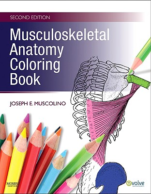 9780323057219-Musculoskeletal-Anatomy-Coloring-Book