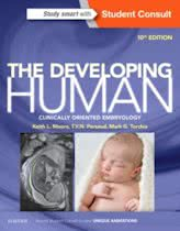 9780323313384-The-Developing-Human