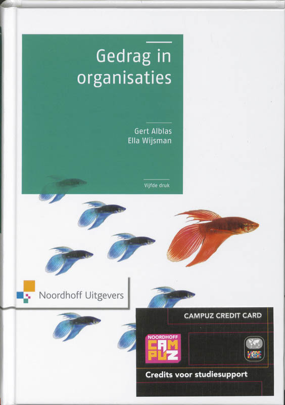 Gedrag in organisaties + website